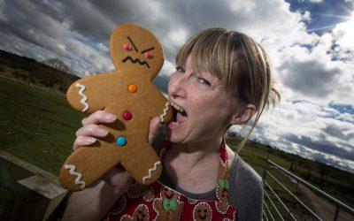 Ginger Ninjas will be taste bud tingling  at Food Festival