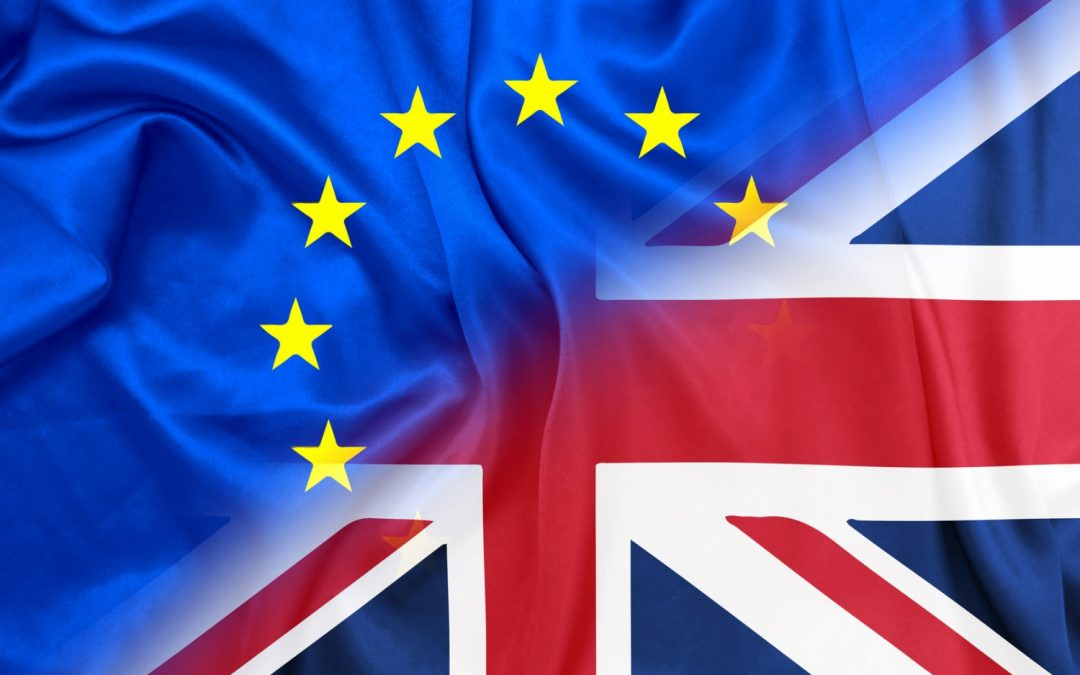 Latest EU survey reveals most chamber members still favour remain