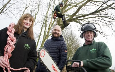 Tree-mendous training helps Peterlee company win new work