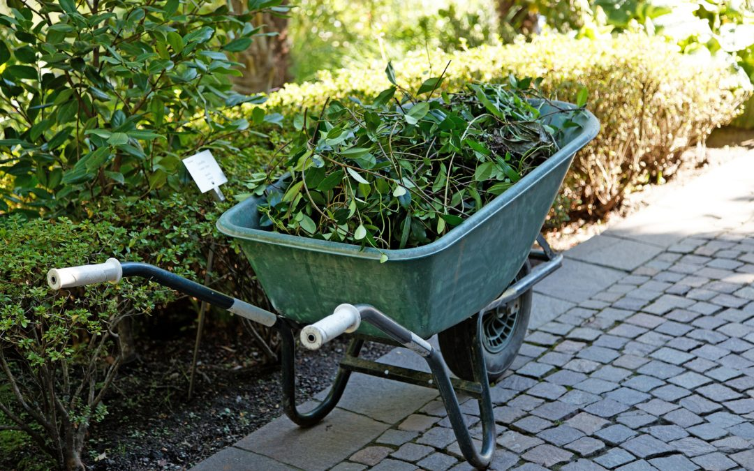 East Durham residents can apply to have their green waste collected