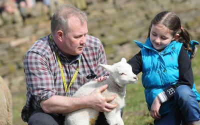 Family fun on offer as college's popular Spring Show returns