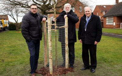 Trees to be planted across East Durham to create greener and healthier urban areas