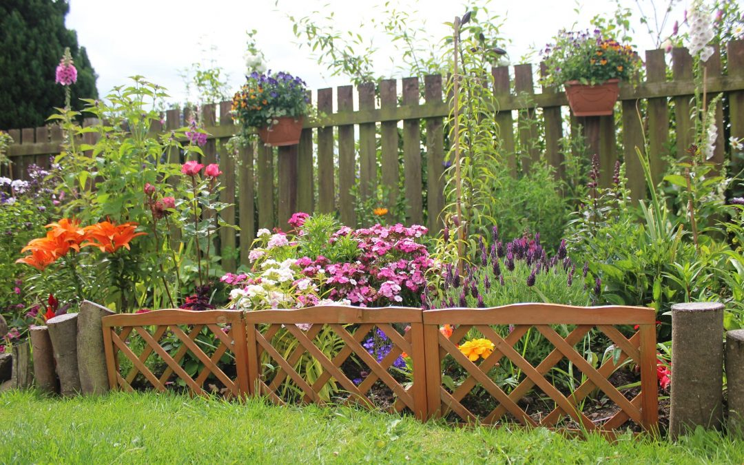 Keen gardeners from East Durham sought for outdoor spaces photography competition