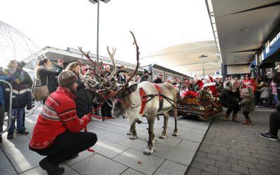 Dalton Park announces a surprise festive addition to its team this Christmas
