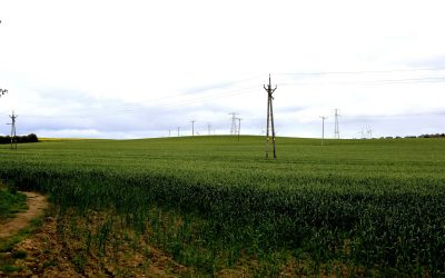 Plans for solar energy farm between Murton and South Hetton to be unveiled